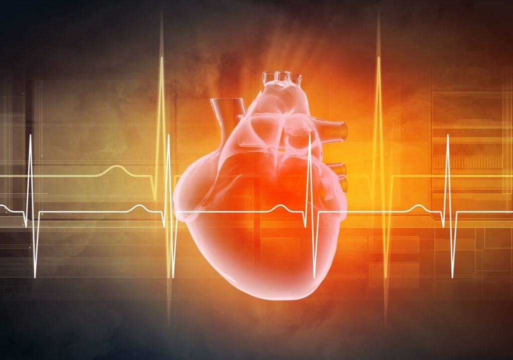 functional medicine in maine cardiovascular